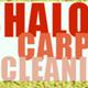 Shalom Carpet cleaning