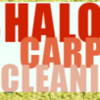 Shalom Carpet cleaning